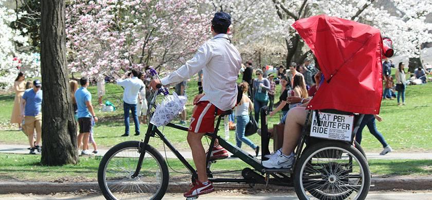 un paseo en bicicleta por central park